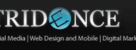 Tridence Digital Marketing | SEO | Social Media