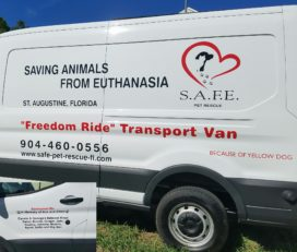 S.A.F.E. Pet Rescue and Thrift Store